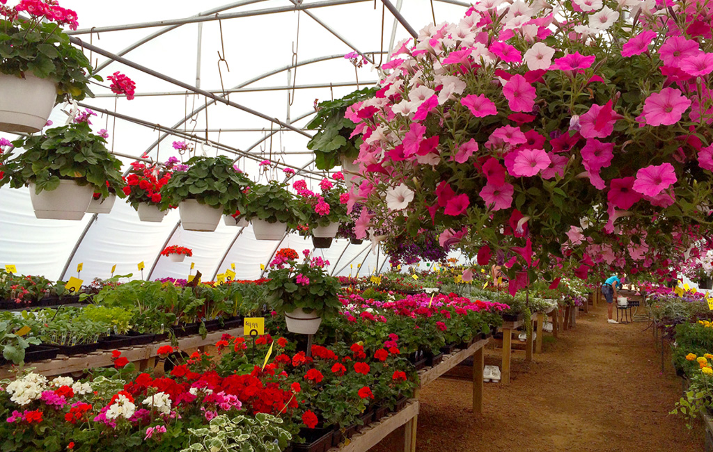 Visit Our Eagle River Garden Center!