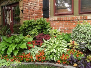 Perennial Bed with Coleus