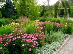 Plant Perennials For Season Long Color Custom Landscaping